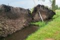 Nawałnica nad Myszyńcem. Połamane drzewa, zniszczone groby (zdjęcia, wideo)