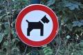 Skrzynka skarg: zakaz wyprowadzania psów - szkic